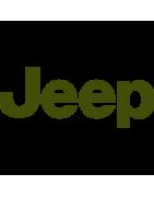 Toute la peinture pour votre voiture Jeep