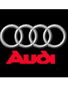 Toute la peinture pour votre voiture Audi