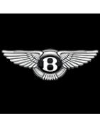 Toute la peinture pour votre voiture Bentley